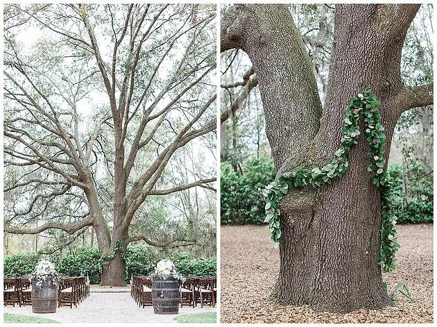 Bowing Oaks Wedding