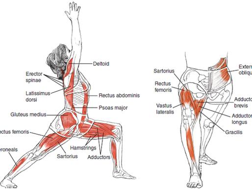 โยคะ ในด้านการสร้างความแข็งแรง คือ Strength Training (Body Weight)