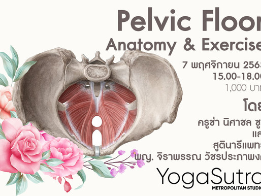 Pelvic Floor Anatomy & Excercise