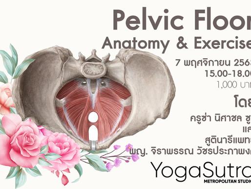 Pelvic Floor Anatomy & Excercise