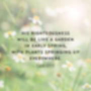 morning-bible-verses-23.jpg