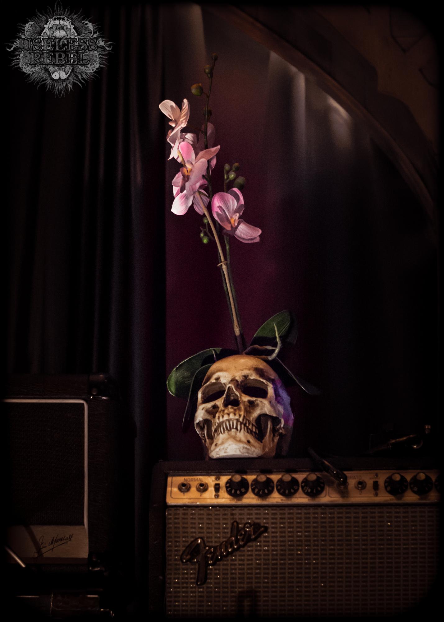 Coliseum Skull