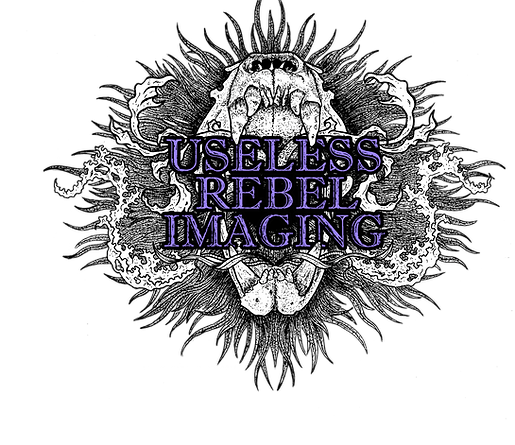 Useless Rebel Imaging Logo