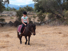 family horse riding holidays spain