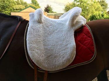 Zalea Ludomar peau mouton