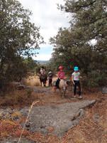 Horse vacation Gredos in family