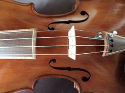 Violin close up_edited