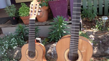 The Classical Guitar Family and the Octave Guitar
