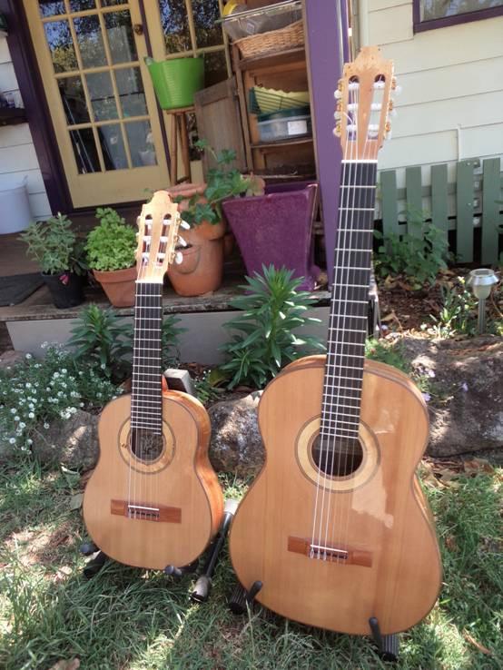 Octave Guitar