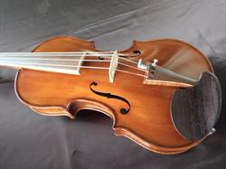 Violin #116