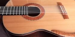 Concert Guitar
