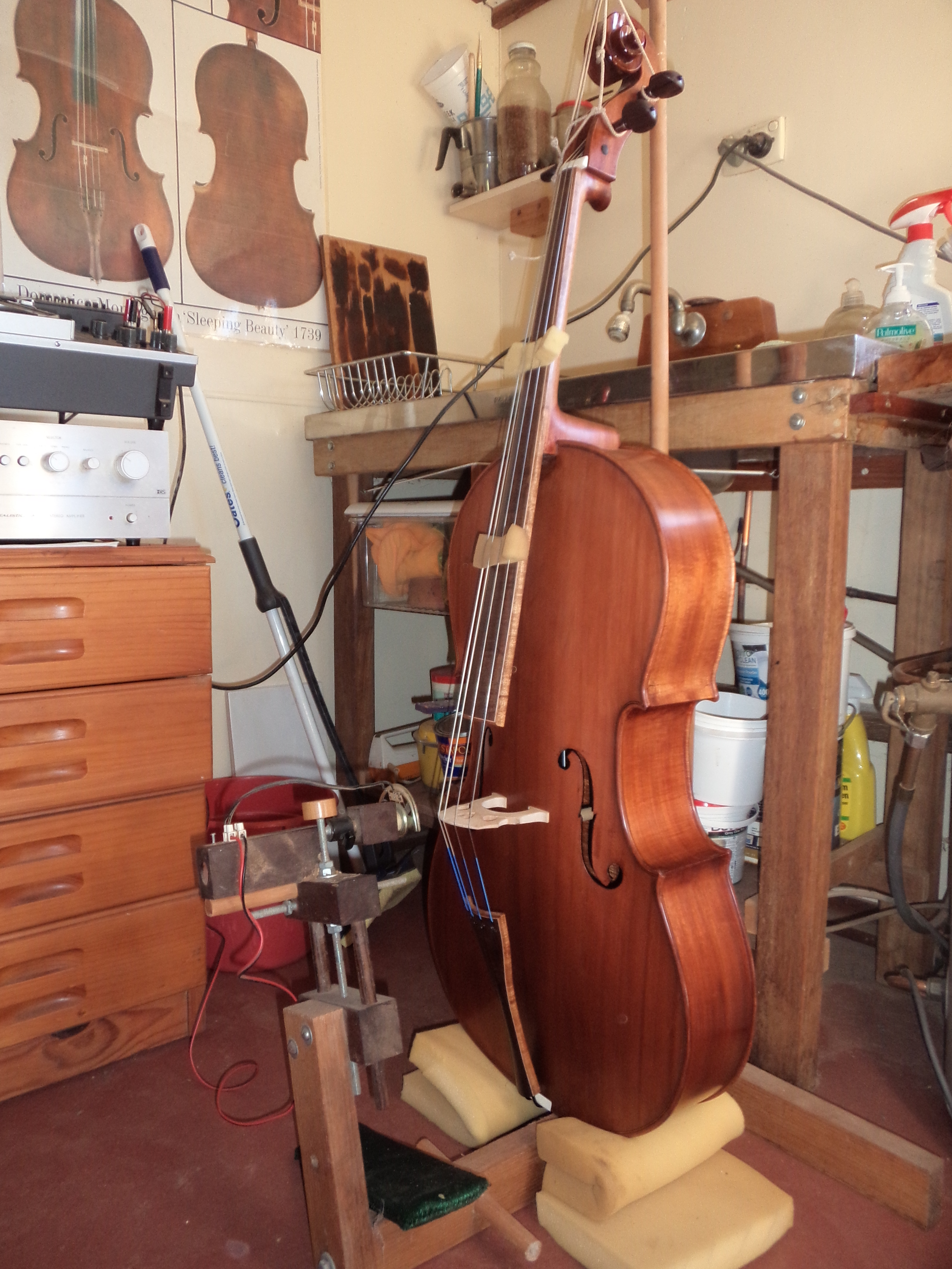 Acoustic testing cello