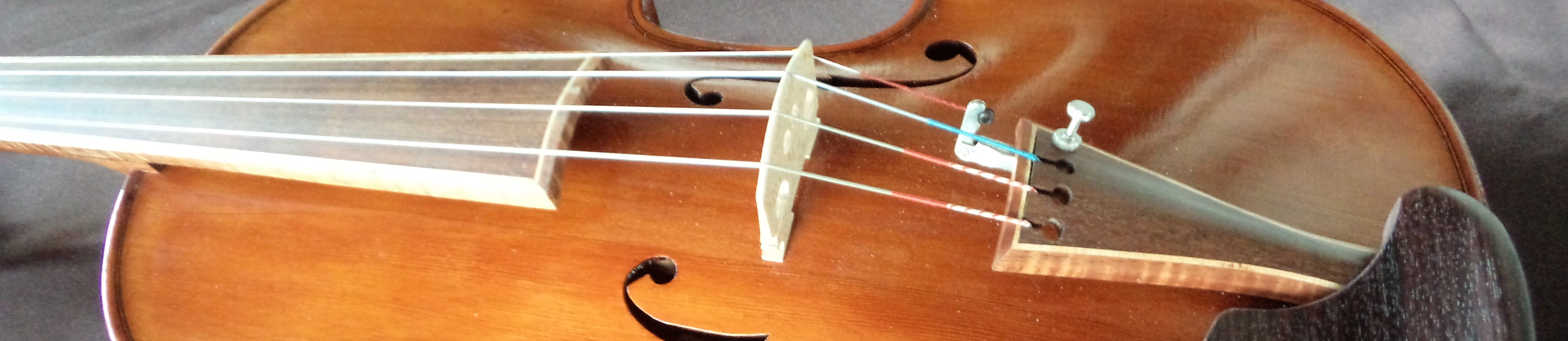 Violin strip #116