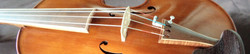 Violin strip #116