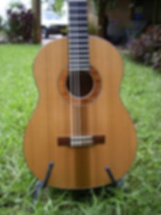Grange guitars