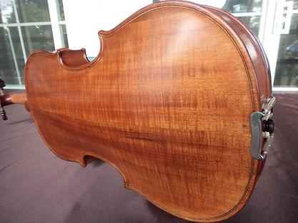 Australian wood viola