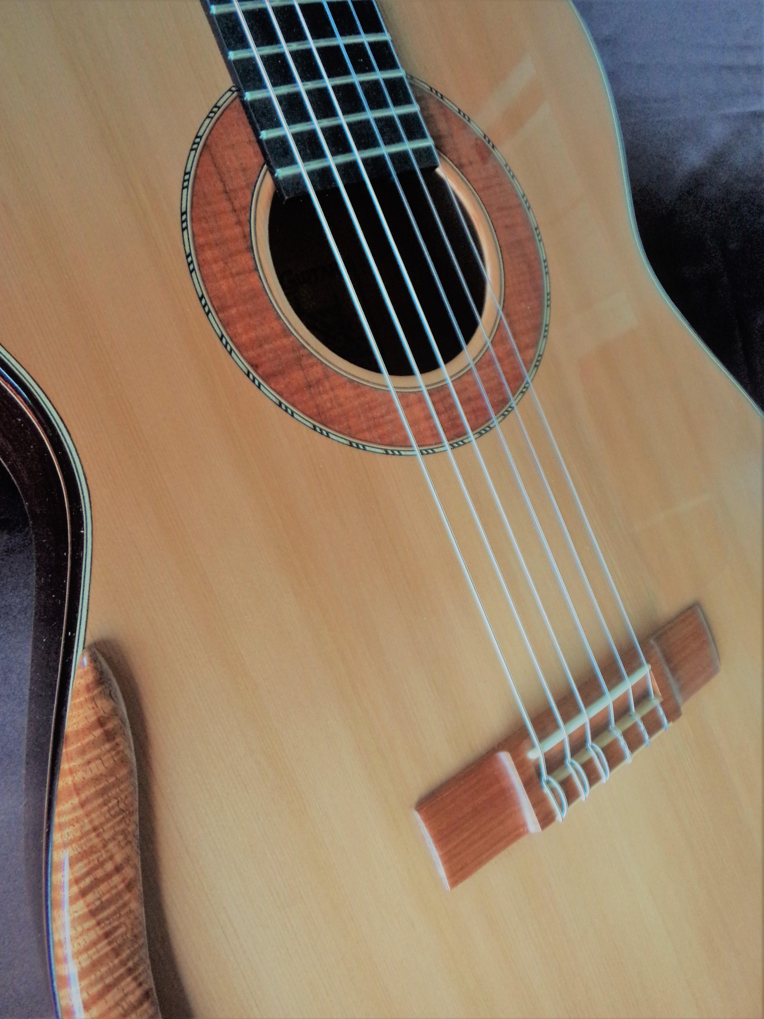 Concert Guitar #99 closeup