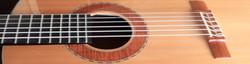 Guitar strip