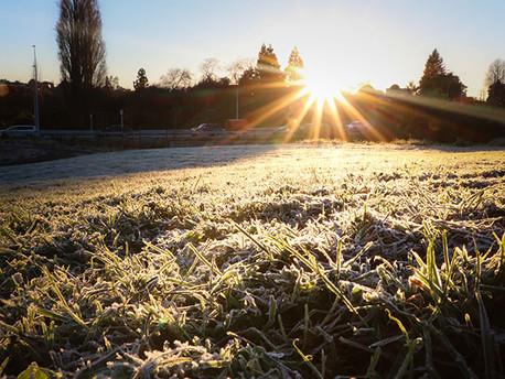 Releasing Winter