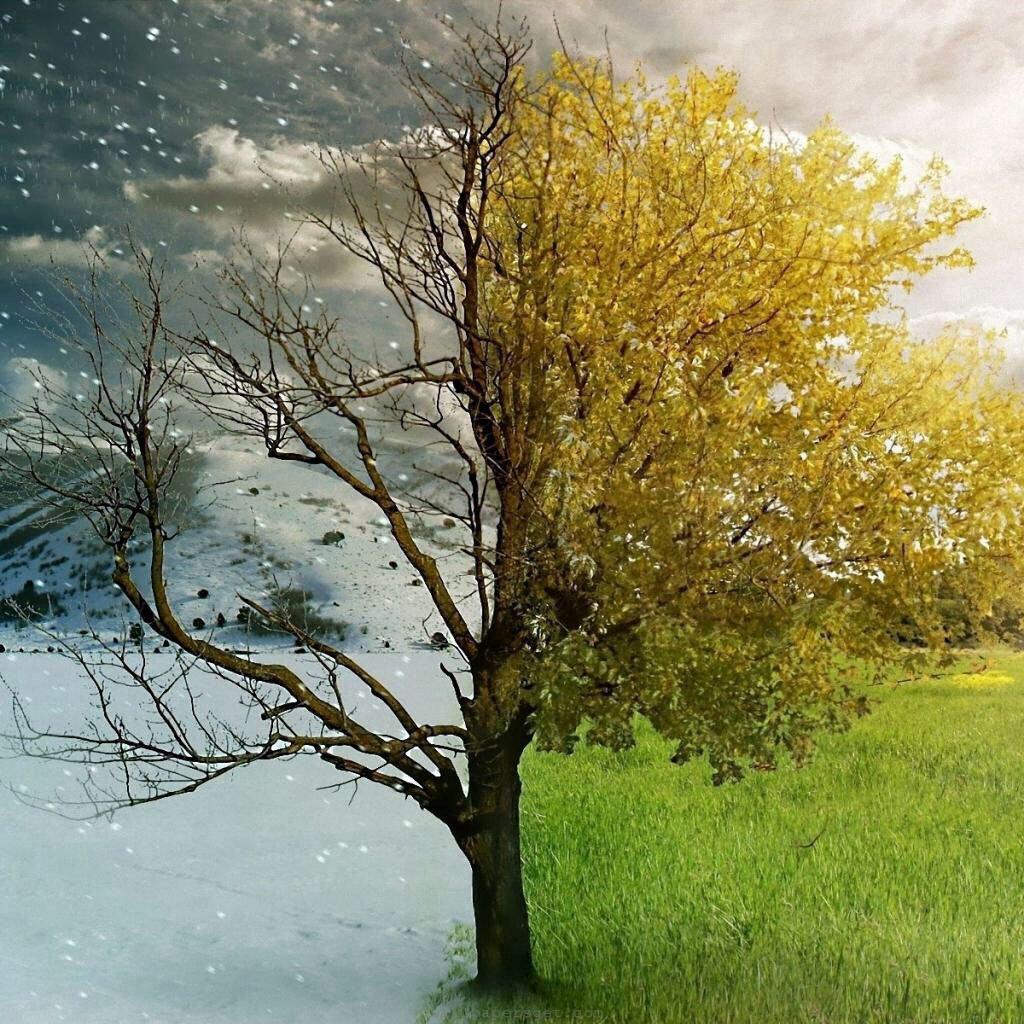 Both Equinox or Solstice Readings