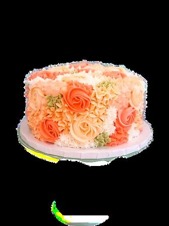 cake2_edited.png
