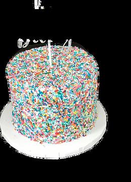 cake27_edited.png