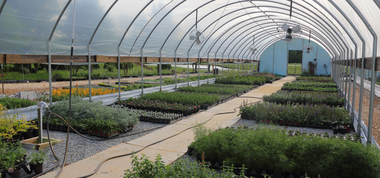Melodia Hill Plant Farm