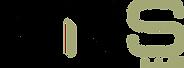KNS Logo V3.png