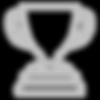 noun_Trophy_2422892_c0c0c0.png