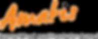AMATIS_logo.png