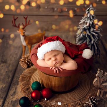 canberra newborn photoshoot