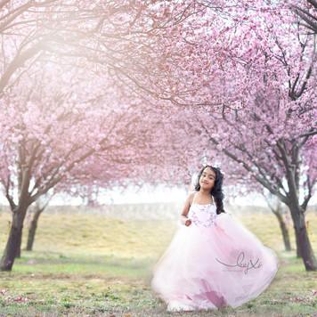 Canberra professional princess photoshoot