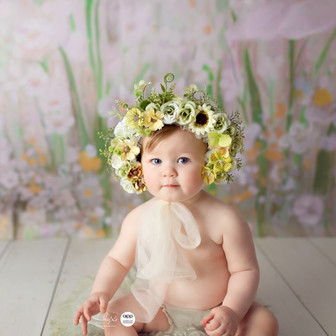 Canberra 6-12 months photoshoot