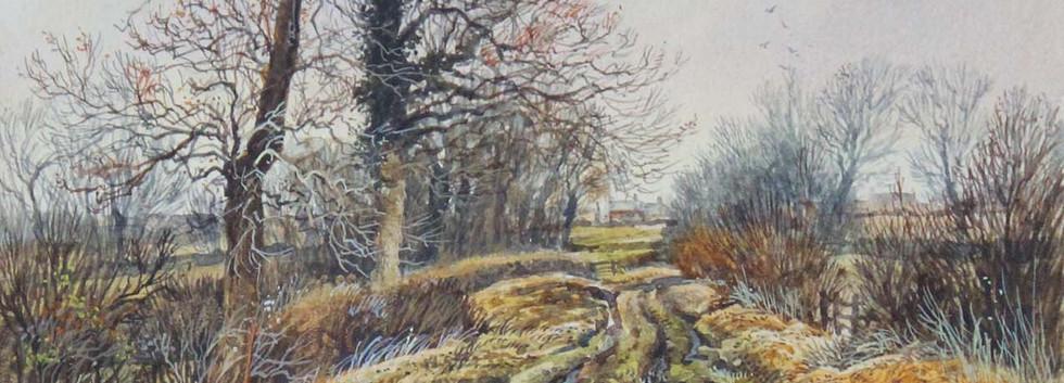 Country Lane January 25cm x 17cm.jpg