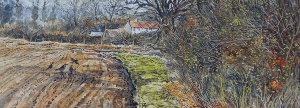 March Headland, Hinwick 30cm x 22cm.jpg