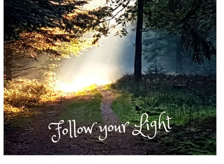 Follow your Light...