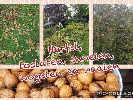Herfst, tijd van loslaten, snoeien, oogsten en zaaien