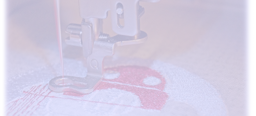 Embroidery Strip - Pic.png