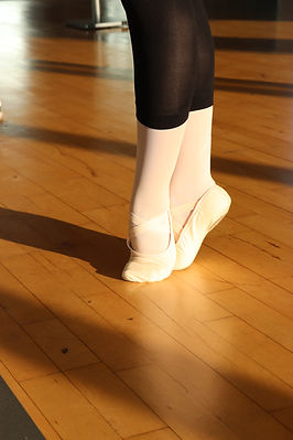 082021Bild2.JPG Ballett Sindelfingen | Sindelfingen Ballett | Ballett Erwachsene | Ballett Anfänger | Ballett Mittelstufe | Ballett Fortgeschrittene