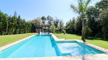 Huge salt water pool