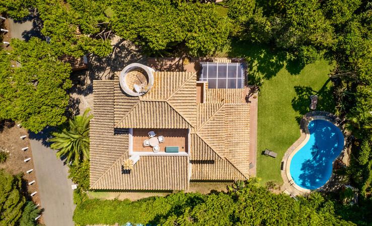 pine-trees-house-garden-pool-ref01.jpg