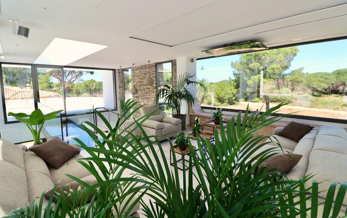 plants-modern-living-room-ref18jpg