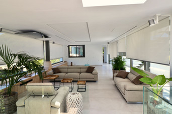 tetevision-sofas-plants-living-room-ref1