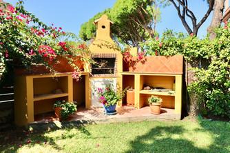 barbecue-garden-plants-pine-trees-roche-ref40.jpg