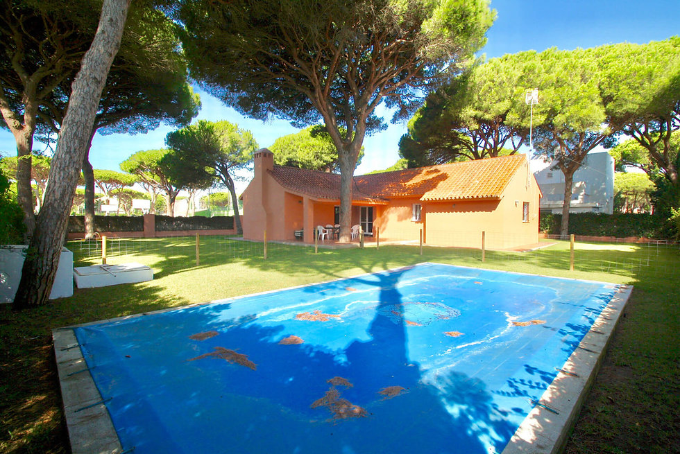 fenced-pool-garden-property-refv90.jpeg