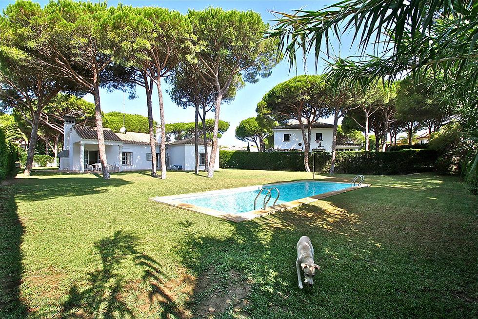 pool-garden-pine-trees-house-refv88.JPG