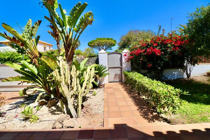 plot-plants-entrance-door-garden-ref185.jpg