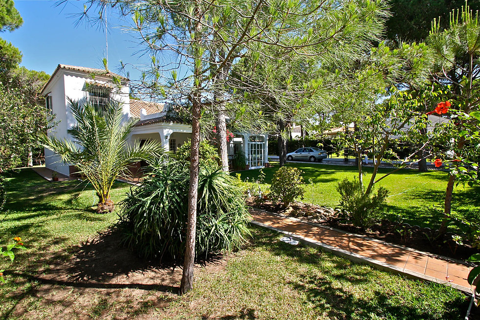 pine-trees-garden-property-refv84.JPG