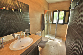 bathroom-washbasin-shower-ref159jpeg