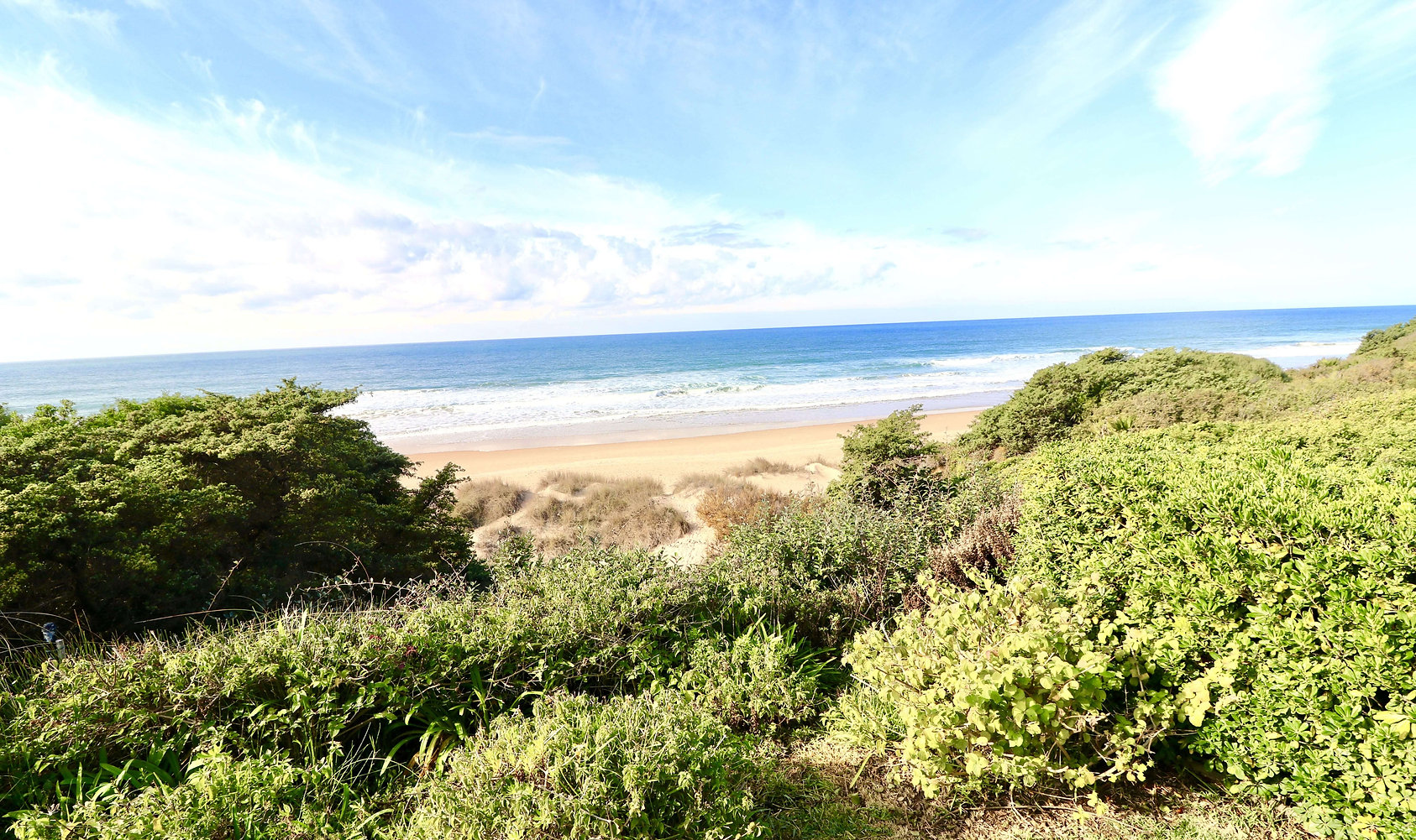 beach-roche-atlantic-ocean-refv41.jpeg